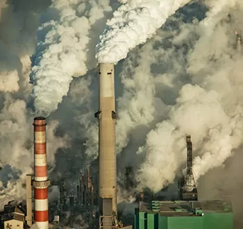 Climate Crisis: We Need a Revolution
